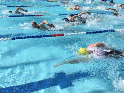 Trainingsplan Schwimmen